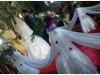 fotograf-nunta-neamt-fotografii-nunti-neamt-vasilica-si-ionut-2013-008