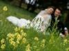 Fotograf nunti Pascani fotografii nunta Andreea si  Ionut-2013-012