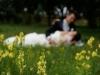 Fotograf nunti Pascani fotografii nunta Andreea si  Ionut-2013-014