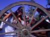 fotografii-3d-nunti-iasi-fotografie-3d-anaglyph-foto-3d-012
