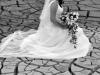 fotografii-nunta-pascani-24-iulie-2010-001
