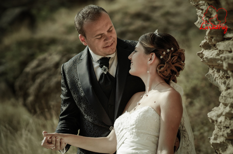 Fotografii sedinta foto nunta Roxana si Andrei - 2013 Iasi 006