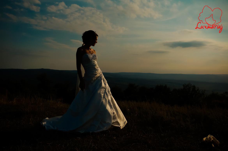 Fotografii sedinta foto nunta Roxana si Andrei - 2013 Iasi 017