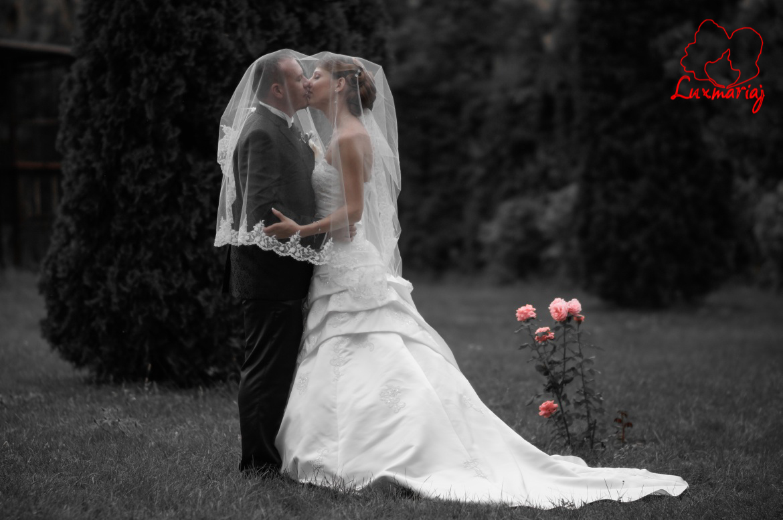 Fotografii sedinta foto nunta Roxana si Andrei - 2013 Iasi 019