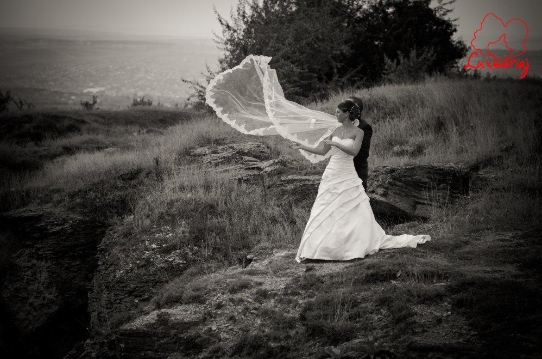 Fotografii sedinta foto nunta Roxana si Andrei - 2013 Iasi 034