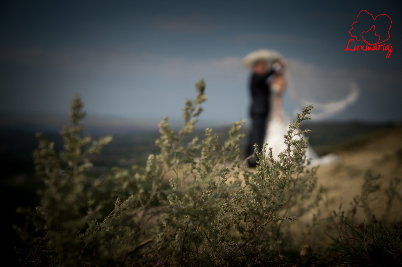 Fotografii sedinta foto nunta Roxana si Andrei - 2013 Iasi 040