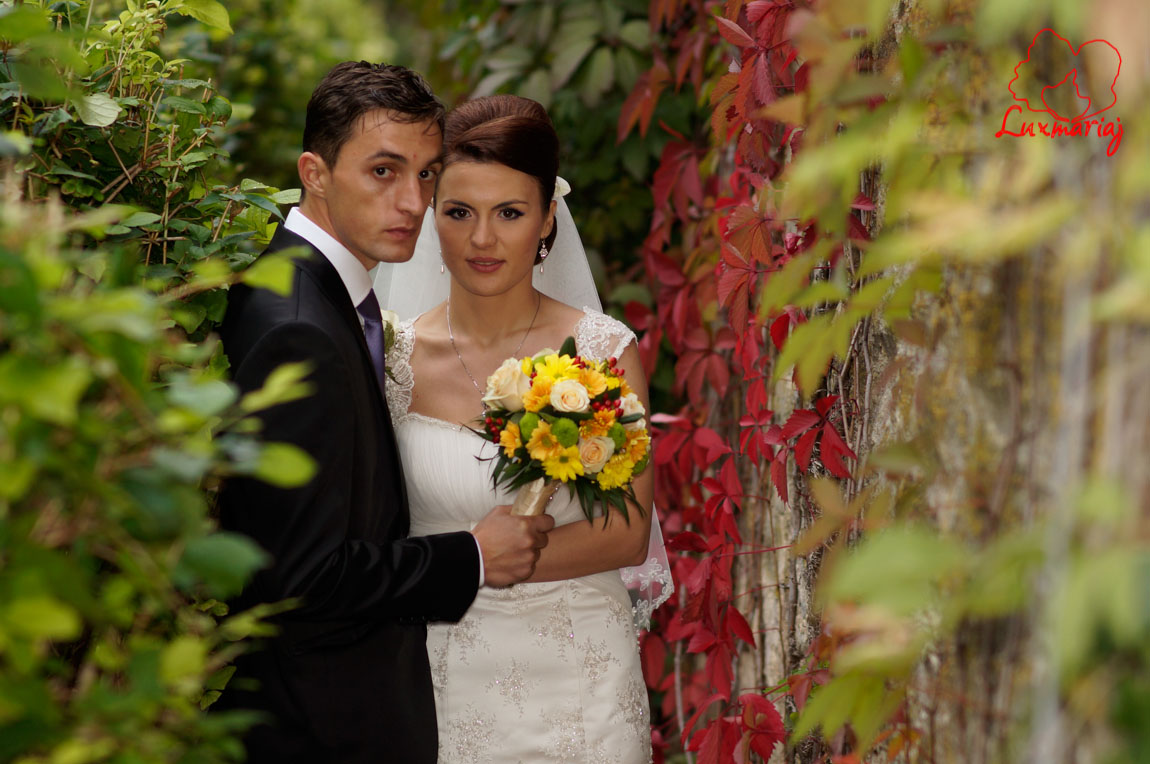 Sedinta foto nunta Paula si Andrei - fotograf Vasiliu Leonard 2013-3600