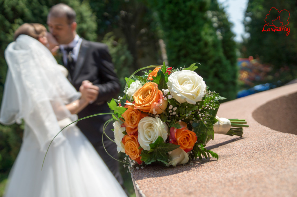 Fotograf nunta Iasi - nunta Raluca si Constantin-16