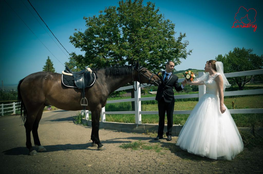 Fotograf nunta Iasi - nunta Raluca si Constantin-8
