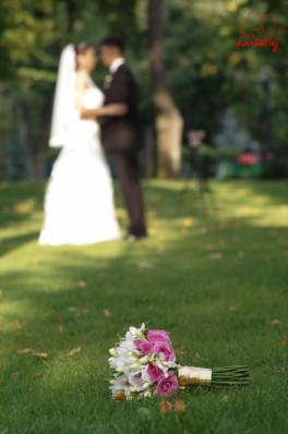 Fotografii nunta Sorina si Vladut  - Vaslui 2014 fotograf Vasiliu Leonard-76
