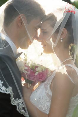 Fotografii nunta Sorina si Vladut  - Vaslui 2014 fotograf Vasiliu Leonard-78